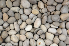 Pebble stone Stock Images