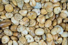 Pebble stone background Royalty Free Stock Photography