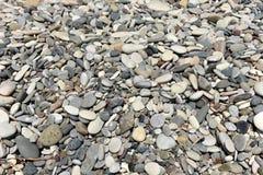 Pebble stone background Royalty Free Stock Images