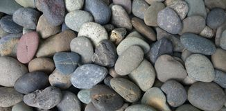 Pebble stone background Stock Images