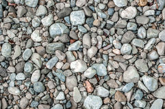 Pebble stone closeup on the shore Royalty Free Stock Image