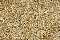 Pebble stone floor tile seamless background. Cement mixed gravel pebble stone floor texture. Wet round pebble stone rock floor in dramatic lighting royalty free stock photo
