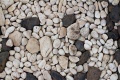 Pebble stone floorbackground. Pebble stone floor tile texture and seamless background Stock Photography