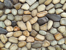 The pebble stone floors. Background textures Stock Images