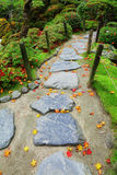Pebble stone path with maple leaves Stock Images