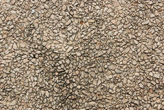 Pebble stone wall Stock Images
