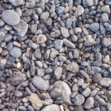 Pebble stones as a background Stock Photography