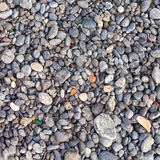 Pebble stones as a background Stock Image
