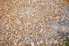 Pebble stones background Royalty Free Stock Images