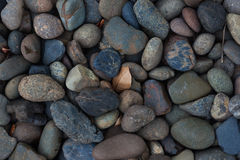 Pebble stones for background. Macro shot. Top view. Stock Images