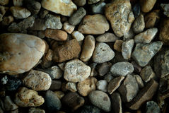 Pebble stones. Closeup for background Stock Photography