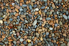 Pebble stones in the garden Royalty Free Stock Image