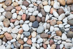 Pebble stones. Picture of many colorful pebble stones Royalty Free Stock Photo