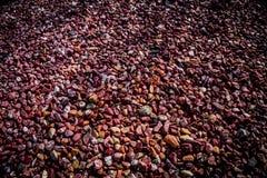 Pebble Stones Royalty Free Stock Photography