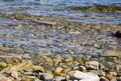 Pebble stones are rocky slippery in water near the shore. Pebble stones are rocky slippery in the water near the shore Stock Photos