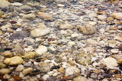 Pebble stones under transparent water. Nature background Stock Photography