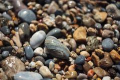 Pebble texture close up Stock Photos
