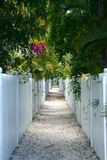 Pebble walkway and White Fences. Royalty Free Stock Photo
