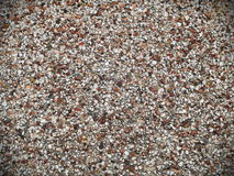 Pebble Wall Background Royalty Free Stock Photography