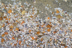 Pebble in water texture. Sand and pebble texture in water Stock Photos