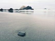 Pebble on Wet Sandy Beach Royalty Free Stock Image