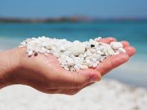 Pebble. White pebble on the Sardinia Stock Photography