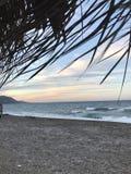 pebbled的海滩 库存图片
