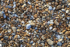 Pebbled Beach Stock Photos