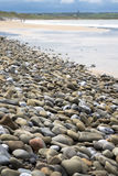 Pebbled beach beside the links Royalty Free Stock Photo