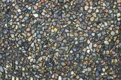 Pebbled stoned tiles Royalty Free Stock Photos