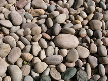 Pebbles. Dry Pebbles stock image