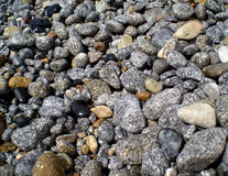 Pebbles. A beach covered with grey and black pabbles Stock Image