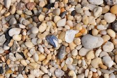 Pebbles. On the beach close up Royalty Free Stock Photography