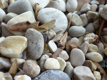 Pebbles Stock Image
