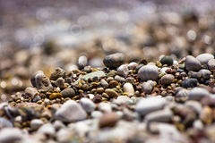 Free Pebbles Royalty Free Stock Images - 22381279