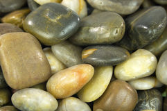 Pebbles. A collection of decorative pebbles Stock Photography