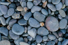 pebbles Royaltyfria Bilder