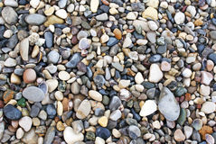 Pebbles. On the shore Stock Photography