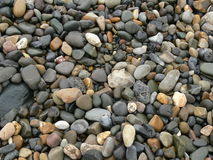 pebbles Royaltyfria Foton