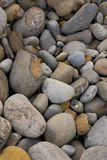 Pebbles. On the beach background Stock Images