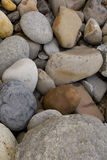 Pebbles. On the beach background Stock Photography