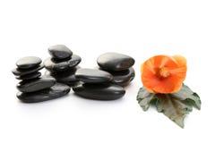 pebbles arkivfoton