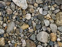 Pebbles. Background - Pebbles Royalty Free Stock Image