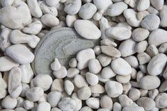 Pebbles. Many pebbles at the beach stock photos