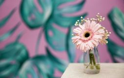 Green background against beautiful spring pink flower. Spa zone royalty free stock image