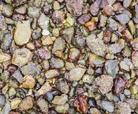 Pebbles background with a variety of colors Stock Images
