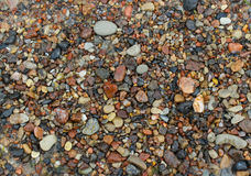 Pebbles on the Sand Royalty Free Stock Image