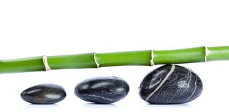 Pebbles and bamboo stock illustration