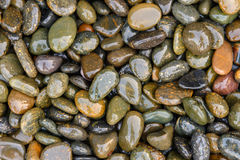 Pebbles be wet on the ground. Background Royalty Free Stock Photo