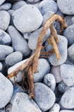 Pebbles on the beach Stock Images